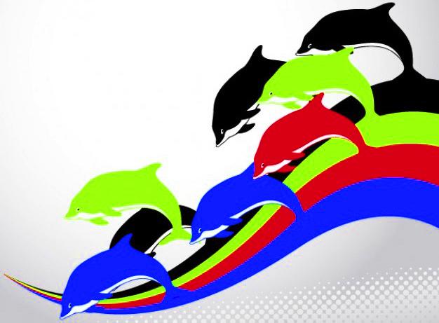 dolphin-rainbow