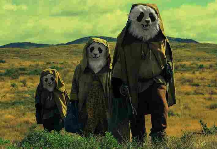 Panda-Wastelander