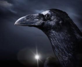 raven-lee3sw2