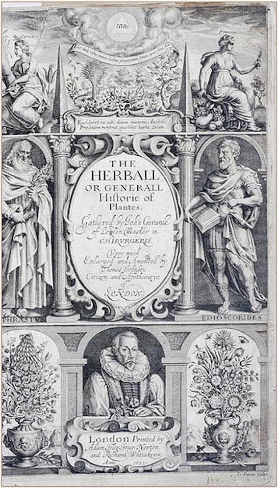 herball1633cover