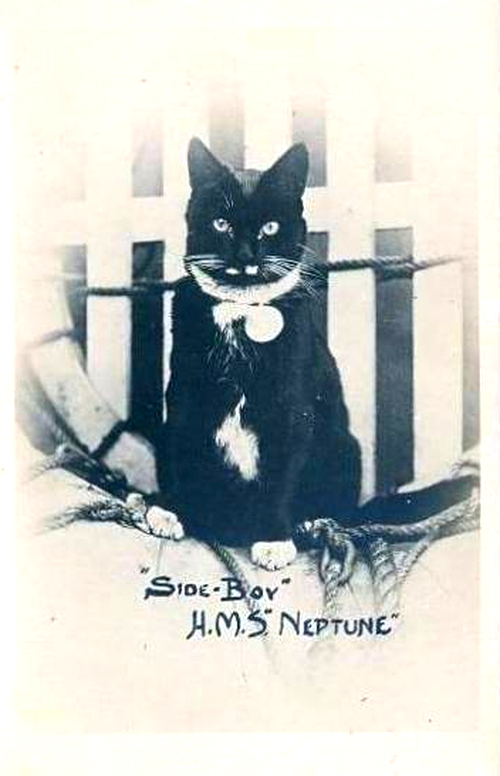 Side-Boy was the HMS Neptune's ship's cat, and also featured on the 'lucky black cat' postcards.