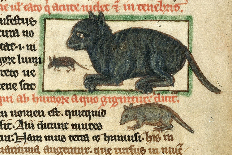 Cat and mouse from Peraldus's Theological miscellany ©British Library Harley 3244