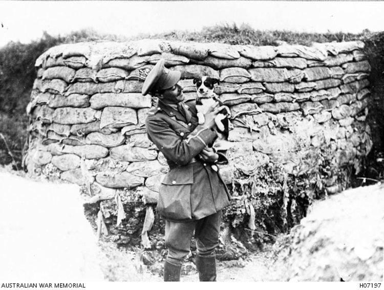 Fritz-WWI-Dogs