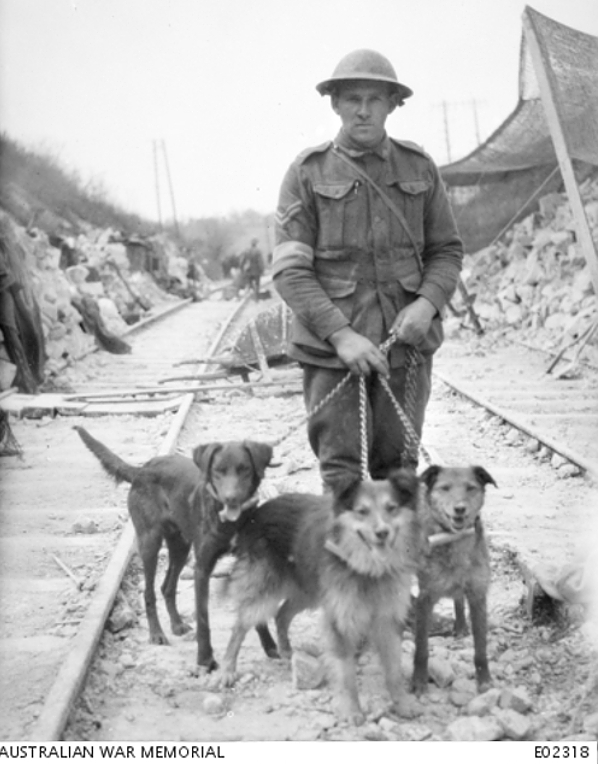 Trick-Buller-Nell-WWI-Dogs