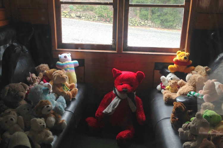 Teddy-Bears-Picnic-005