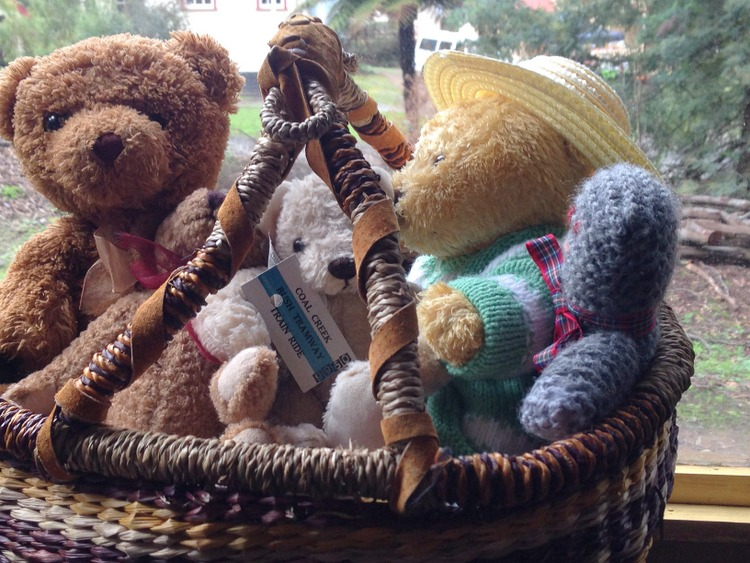 Teddy-Bears-Picnic-012
