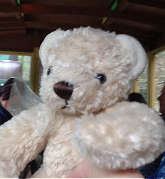 Teddy-Bears-Picnic-015