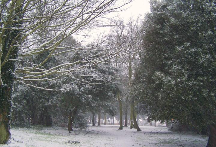 Merry Christmas from Neil Kemp - Margate, Kent, somewhere beyond Lantern Waste