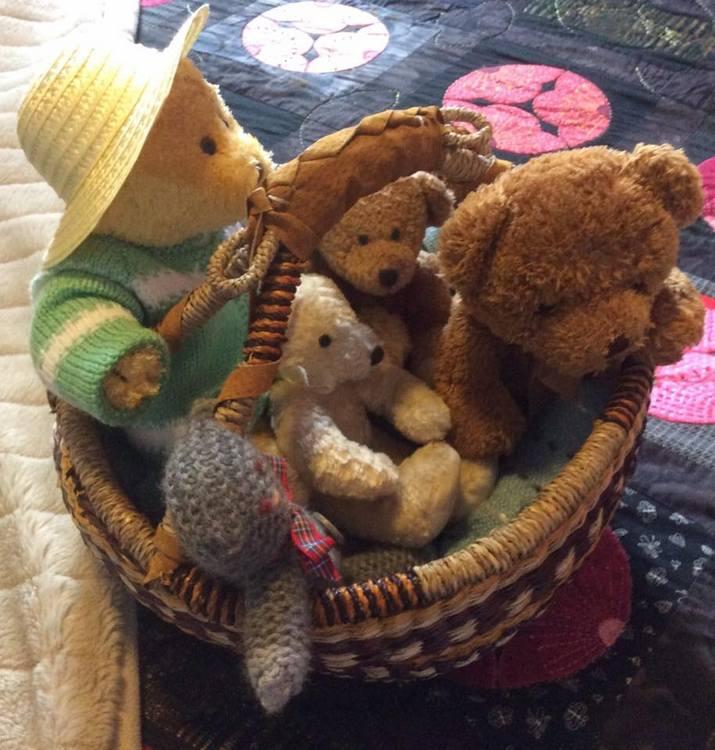 Teddy-Bears-Picnic-001