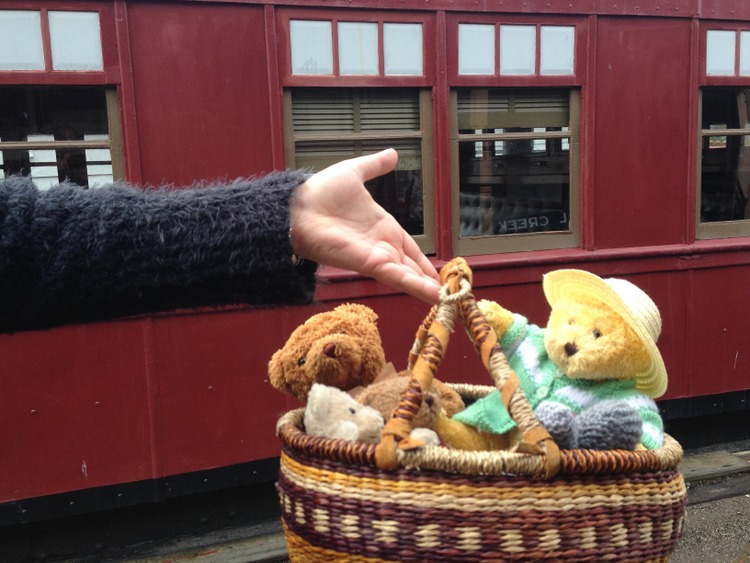 Teddy-Bears-Picnic-002