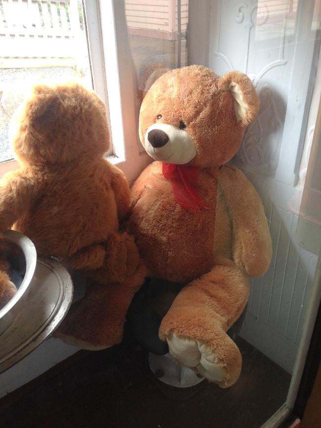 Teddy-Bears-Picnic-003