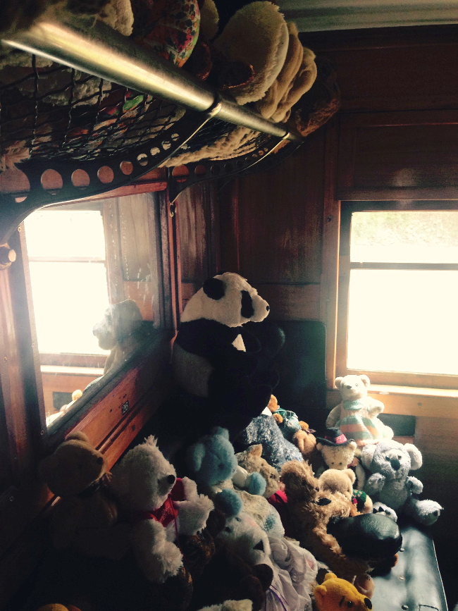 Teddy-Bears-Picnic-006