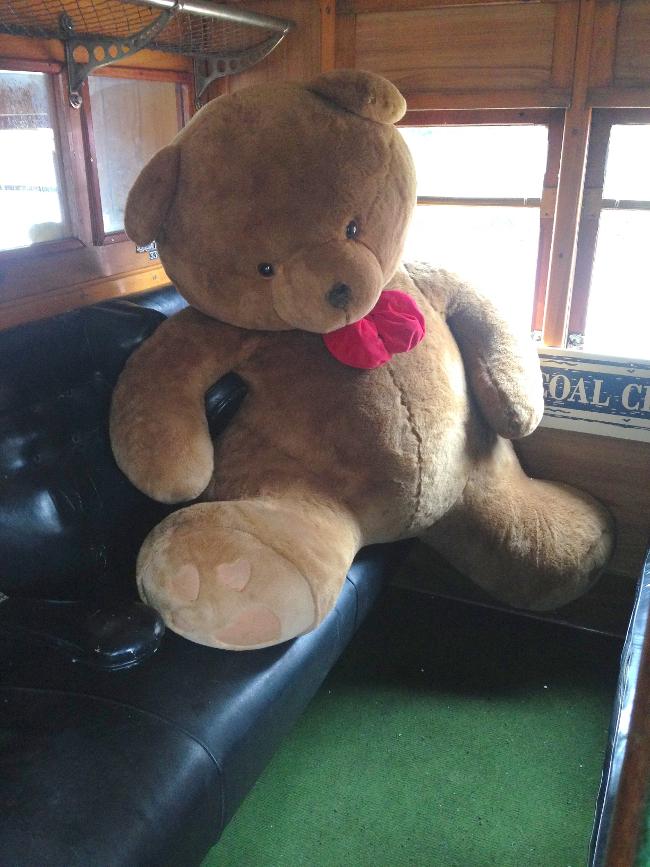 Teddy-Bears-Picnic-007
