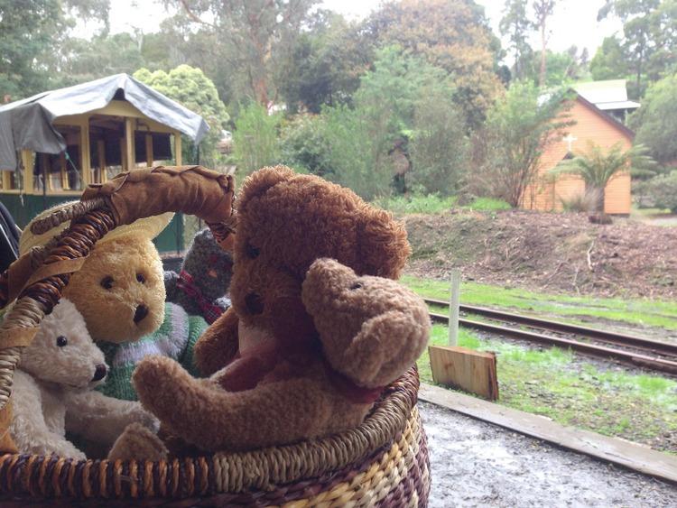 Teddy-Bears-Picnic-011