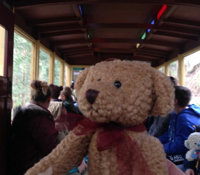 Teddy-Bears-Picnic-014