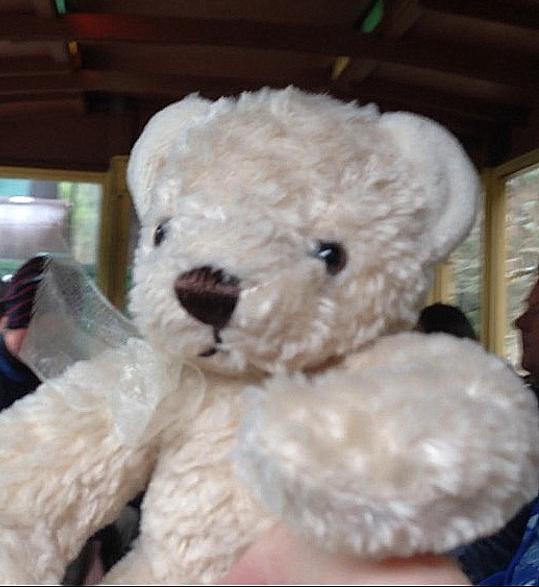 Teddy-Bears-Picnic-015