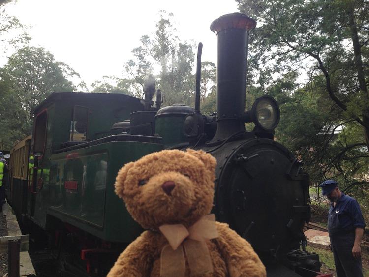 Teddy-Bears-Picnic-016