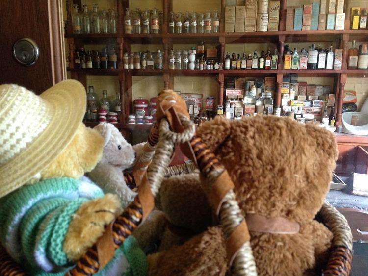 Teddy-Bears-Picnic-021