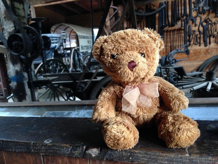 Teddy-Bears-Picnic-022