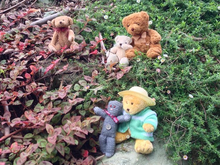 Teddy-Bears-Picnic-023