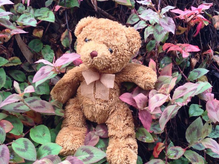 Teddy-Bears-Picnic-024