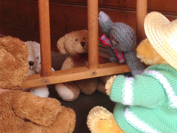 Teddy-Bears-Picnic-027