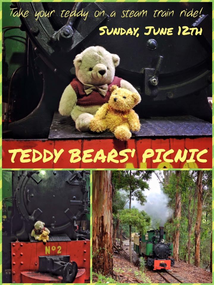 bearspicnick