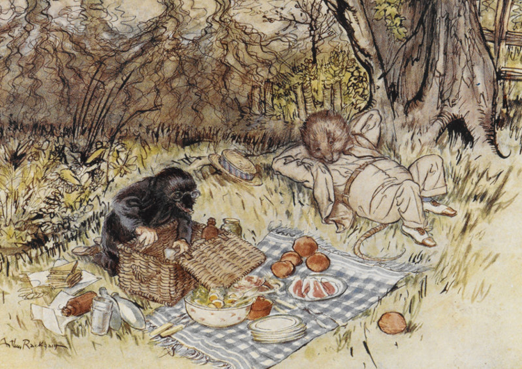 Rackham-Wind-in-the-Willows-Picnic